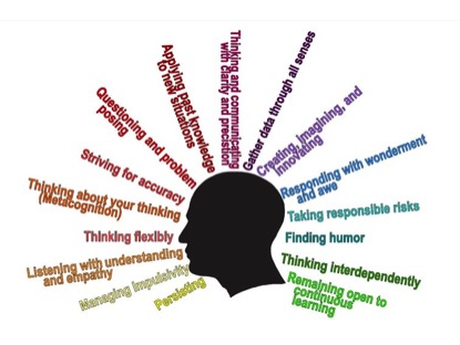 What are Habits of Mind?